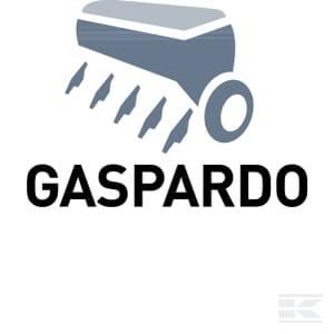 C_GASPARDO