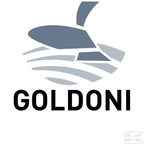 H_GOLDONI