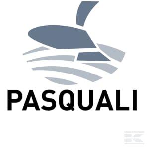 H_PASQUALI