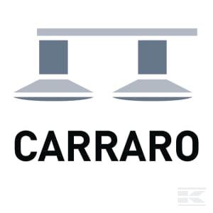 D_CARRARO