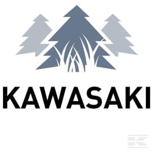 M_KAWASAKI