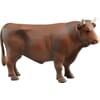 U02309 Bull brown
