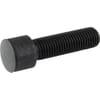 Cylindrical hex socket screw 16x55 12.9