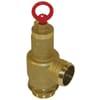 Safety valve slurry tank with hose tail