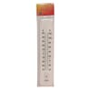 Thermometer 380mm Outdoor Dual