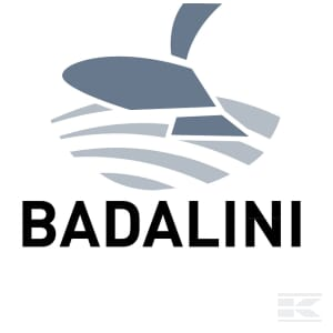 H_BADALINI