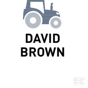K_DAVID_BROWN