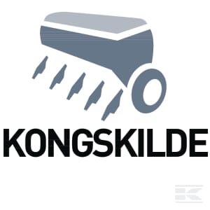 C_KONGSKILDE
