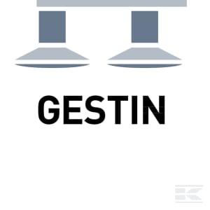 D_GESTIN
