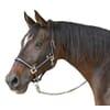 """+Halter """"Mustang"""" black/silver"""