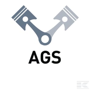 O_AGS