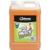 Mr Muscle Floor Cleaner
