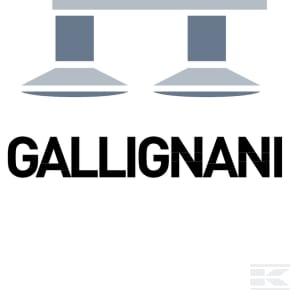 D_GALLIGNANI