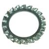 Serrated lock washer M8x15x0.8mm, Steel Zinc-plated DIN 6798 Kramp