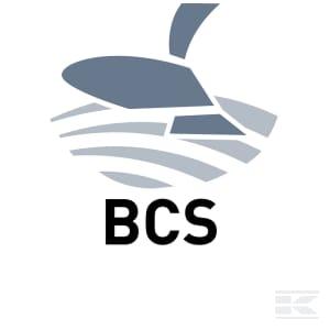 H_BCS