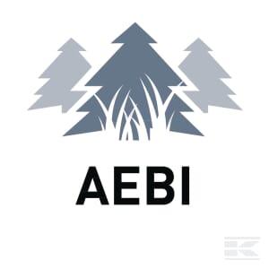 M_AEBI_01