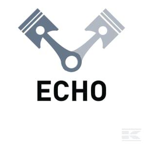 O_ECHO