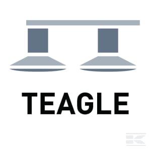 D_TEAGLE
