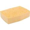 Viscous sponge