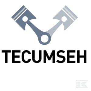 O_TECUMSEH