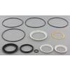 Seal Kit for Orbit motors: Char Lynn (Eaton)