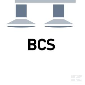 D_BCS