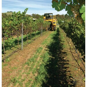 128_VITICULTURAL_EQUIPMENT