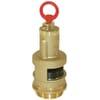 Safety valve slurry tank