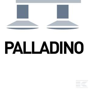 D_PALLADINO