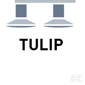 D_TULIP