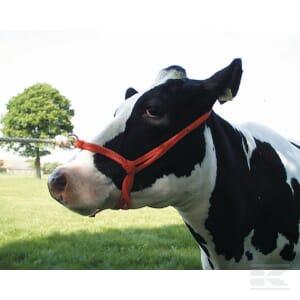 COW_HALTER