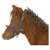 +Nylon foal-halter adjustable blue
