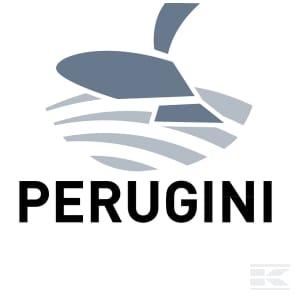 H_PERUGINI